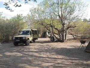 SB IMGP2986 Botswana and VF
