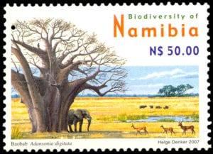 stamp baobab adansonia digitata - helge denker 2007 web