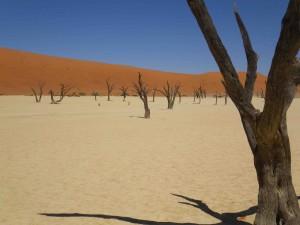 SB IMGP3243 Namibia